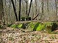 Ligne Maginot (entre Mortzwiller ^ le Lac de la Seigneurie) - panoramio.jpg