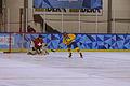 Lillehammer 2016 - Women hockey - Sweden vs Switzerland 68.jpg