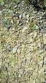 Limon des terrasses quaternaires en Cabardès.jpg