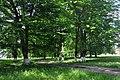 Livchytsi Park RB 46-215-0033.jpg