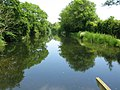 Looking E along the Royal Military Canal - geograph.org.uk - 1359541.jpg
