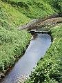 Looking downstream from Invershore Bridge - geograph.org.uk - 480812.jpg