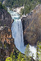Lower Falls of the Yellowstone River (2).jpg