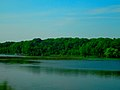 Lower Nemahbin Lake - panoramio.jpg