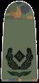 Luftwaffe-251-Major.png