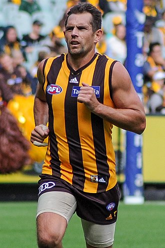 Luke Hodge - Hodge playing for Hawthorn in April 2017