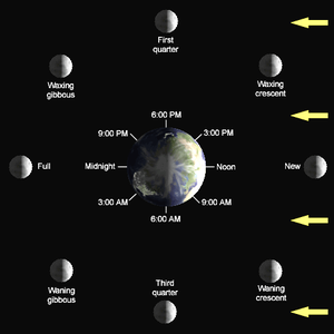 The lunar phase depends on the Moon's position...