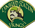 Lynwood station vikings.jpg