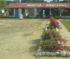 Mafia Island - Mafia Island's airport is situated in the town of Kilindoni.
