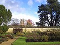 Magdalen Tower from the Botanic Garden - geograph.org.uk - 289217.jpg