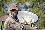 Maize Farmer in Ghana (8202282261).jpg