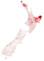 MaoriPopulationPercentage.png