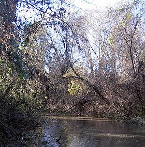 Mark West Creek - Mark West Creek between Windsor Creek and the Russian River.
