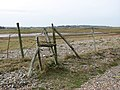 Marsh pastures behind the shingle ridge - geograph.org.uk - 1181052.jpg