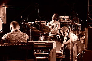 Organ trio - The Medeski, Martin and Wood organ trio demonstrates that an organ trio can come in different varieties; in place of a sax or electric guitarist, this band has an upright bass player as the third member.