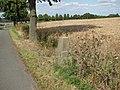 Meilenstein, 1, Elze, Landkreis Hildesheim.jpg
