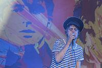 Melt Festival 2013 - Babyshambles-8.jpg