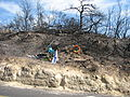 Memorial - Carmel fire 2.JPG
