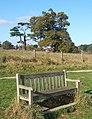 Memorial seat at a favourite spot near Tattingstone - geograph.org.uk - 589076.jpg