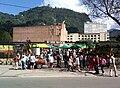Mercado de Pulgas San Alejo.jpg