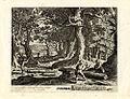 Merian-Aubry Monatsbilder G 1551 I 11 November.jpg