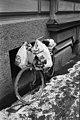 Meritullinkatu 25 - Helsinki 1986 - ser860331 - hkm.HKMS000005-km0000nv5g.jpg
