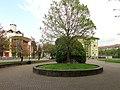 Milano - quartiere Quinto Romano - piazza Madonna della Provvidenza.jpg