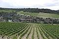 Minerve, France - panoramio (13).jpg