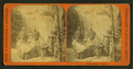 Minnehaha Falls, from Robert N. Dennis collection of stereoscopic views 7.png