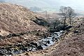 Moasdale Beck - geograph.org.uk - 1220068.jpg