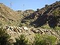 Mogán, Las Palmas, Spain - panoramio (12).jpg