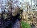 Monarch's Way Lane - geograph.org.uk - 1219214.jpg