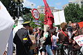 Monsanto Protests in Washington DC - Stierch 02.JPG