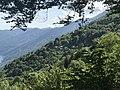 Monti di Ronco above Ronco sopra Ascona, with Porera in the centre.jpg