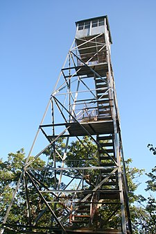 A latticed silvery metal structure seen from below tapering to a small cabin on top, with stairs climbing on the inside. There are some trees with compound leaves behind it.