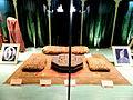 Mumtaz Mahal Museum, Red Fort11.JPG