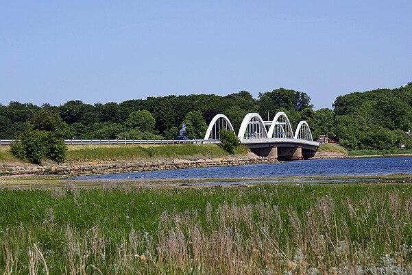 lille belts bro