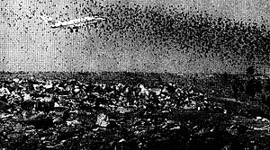 1973 DeKalb–Peachtree Airport Learjet 24 crash - An image showing the proximity of the landfill site to aircraft departing from Runway 20L, and the number of birds that were attracted to the area