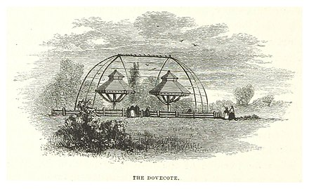 1869, The Dovecote NYC-CentralPark (1869) p114 The Dovecote.jpg