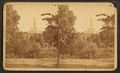 National Lincoln Monument, Springfield, Illinois. View from a point slightly east of north from the Monument, and across a ravine running east and west through Oak Ridge Cemetery, from Robert N. Dennis collection of stereoscopic views 2.png