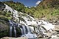 National Park , Nature , Landscape, Landmark , Chiang Mai , Thailand.jpg