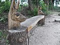 Natuurspeelterrein Schaijk - panoramio (5).jpg