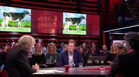 File:Nico Bons wint prijs met showkoe.webm