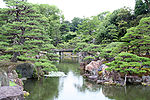 A pond with stones along the sides located in a garden with pine and other trees.