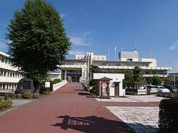 Satellite City Hall
