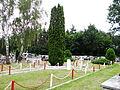 Nisko - cmentarz wojenny-2.jpg