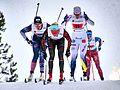 Nordic World Ski Championships 2017-02-26 (32424505483).jpg