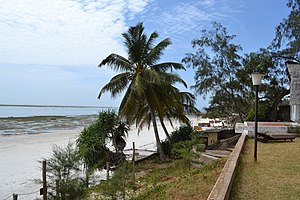 Nyali Beach towards the south from the Reef Hotel during low tide in Mombasa, Kenya.jpg
