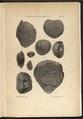 """O'Gorman, Gaëtan (1861-1939 ; comte) et Cossmann, Maurice (1850-1924), """" Le Gisement cuisien de Gan (Basses-Pyrénées),"""".pdf"""