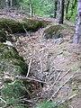 Oberhalb des Steinbruches - panoramio.jpg